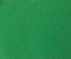 Ripstop Nylon Kelly Green by Fabric Quilt