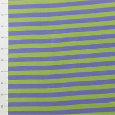 "3/8"" Lilac & Lime Yarn Dyed Stripe by Made Whimsy"