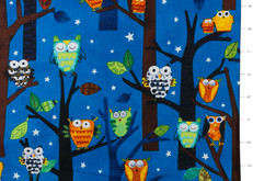 Forest Fun Owls Spring by Robert Kaufman