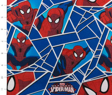 Ultimate Spiderman Shards Blue by Camelot
