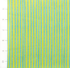 Carousel Cicrus Stripe Turquoise Lime by Quilting Treasures