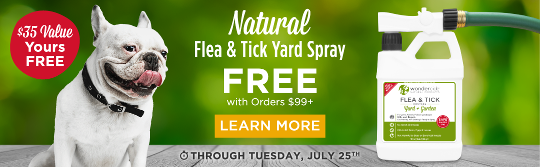 FREE Natural Flea & Tick Yard Spray