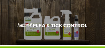 Shop Natural Flea & Tick Control