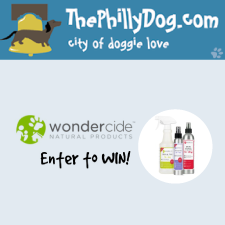 Philly Dog Wondercide Contest