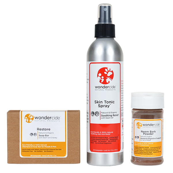 Organic Family Favorites Bundle with Restore Soap