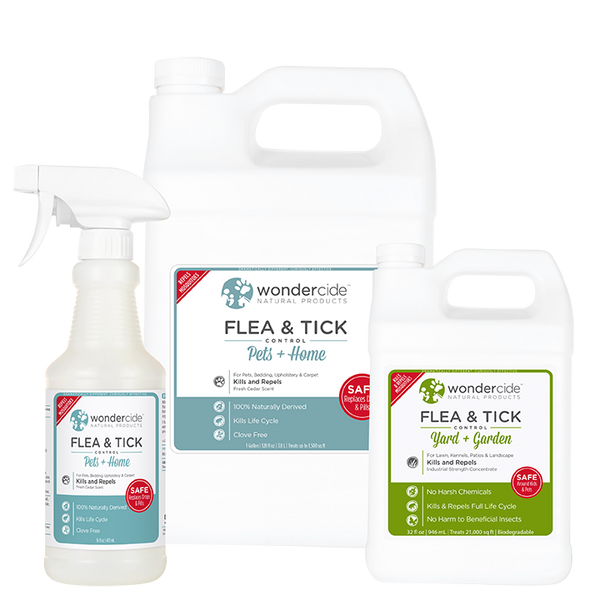 FULL TREATMENT KIT | Natural Flea & Tick Control | Cedar