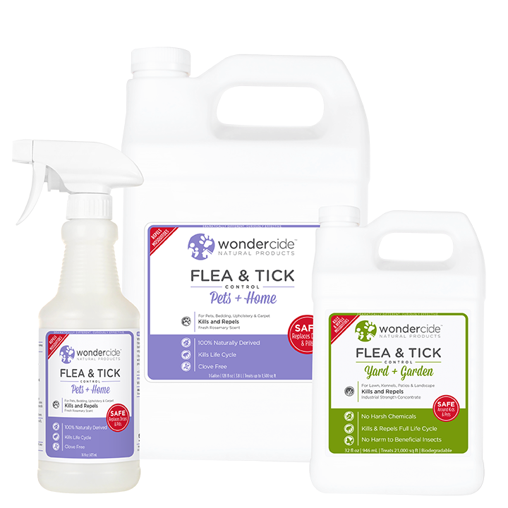 FULL TREATMENT KIT | Natural Flea & Tick Control | Rosemary