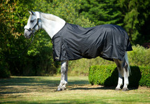 Back On Track Therapeutic Turnout Sheet/Rain Rug