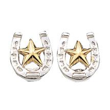 Small Stars & Horseshoe Post Earrings
