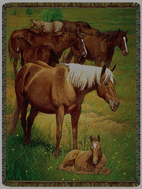 Time to Rest Horse Tapestry Throw CMIL-CM916