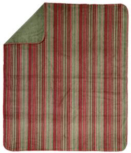 Denali Sage Stripe/Sage MicroPlush Pillow or Throw