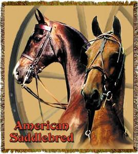 Saddlebred Horse Throw MS 3655TU4