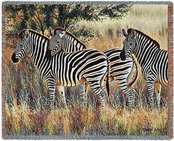 Three Zebra Group Tapestry Throw
