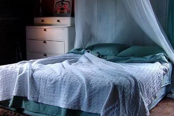 Brahms Mount White Starry Nights Cotton Blanket Queen