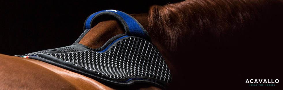 acavallo-equestrian-banner.jpg