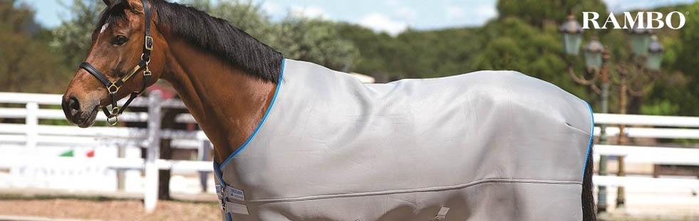 rambo-equestrian-banner.jpg
