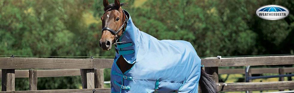 weatherbeeta-equestrian-bannera.jpg