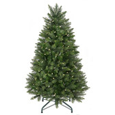 Pine Tree with Clear Bright Lights