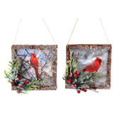 Bird Photo Tree Ornament