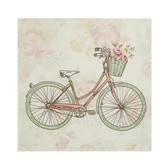 Bicycle Gift Enclosure Card