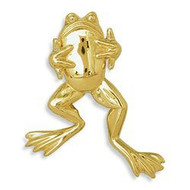 Who Me? Frog Brooch