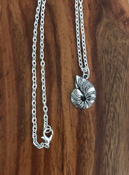Resell for 12.00 or more 20 inch silver tone chain Nautilus shell pewter/ 23mmx16mm Style #NN061518