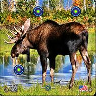 Arrowmat Moose Target 17x17 - 3 Pack Paper Targets