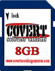 Covert 8gb SD Card
