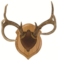 Walnut Hollow Deluxe Antler Display Kit Walnut Mounting Kit