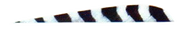 "Trueflight Grey Bar 4"" LW Feathers - 100 Pieces"