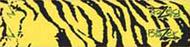 Bohning Blazer Carbon Wrap Yellow Tiger - 1 Dozen