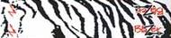 Bohning Blazer Carbon Wrap White Tiger - 1 Dozen