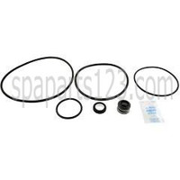 Spa Pump Go-Kit 47, Sta-Rite Dynaglas & J Series Pumps