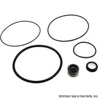 Spa Pump Go-Kit 34, Aqua Flo FMHP/FMCP/TMCP/TMF