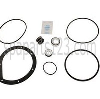 Spa Pump Go-Kit 12, Hayward Powerflo 1500, Turbo-Flo 2000/2001