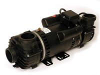 "PUM22000980 Cal Spa Pump - DUALLY, 110V/ W HI TORQUE,2"" PLUMBING"