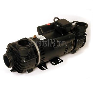 Pum22000980 cal spa pump dually 110v w hi torque 2 for Cal spa dually pump motor