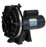 6500-192 Sundance® Spas Sta-Rite Pump 120 Volt, 2 Speed Pump Complete 1984-1989