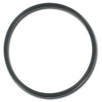 "01510-371 D1 Spas 2"" Union O-Ring (Magic)  4pack"