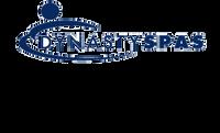 10101 Dynasty Spas Topside Overlay, 2000 Pack, W Air, Trevi Logo