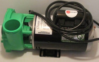 Dynasty Spa Pump, 7HP, 230V, 2Spd, 56Fr, Green Wetend, 8' In.Link Cord, Unions (14854)