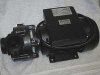 3HP Coast Spas Pump, Ultimax, 50Hz, 2 Speed, AMP, 1023020x