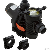 "Pump, Spck EsyFit,DynaPro/Glas,2.0hp,115v/230v,1Spd,1.5"",Kit (1)"