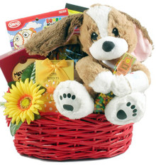 TLC For Your Recovery, Get Well Basket For Kids