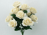 Color Fast Lillian Open rose Bush-Ivory