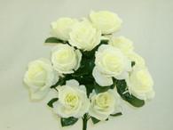 Color Fast Lillian Open Rose Bush-Cream