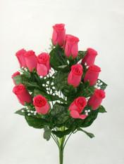 Color Fast Lillian Rose Bush - Hot Pink