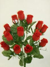 Color Fast Lillian Rose Bush - Red