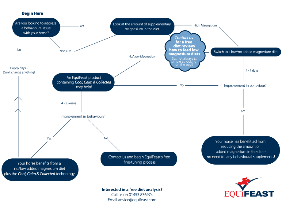 equifeast-flow-chart.png