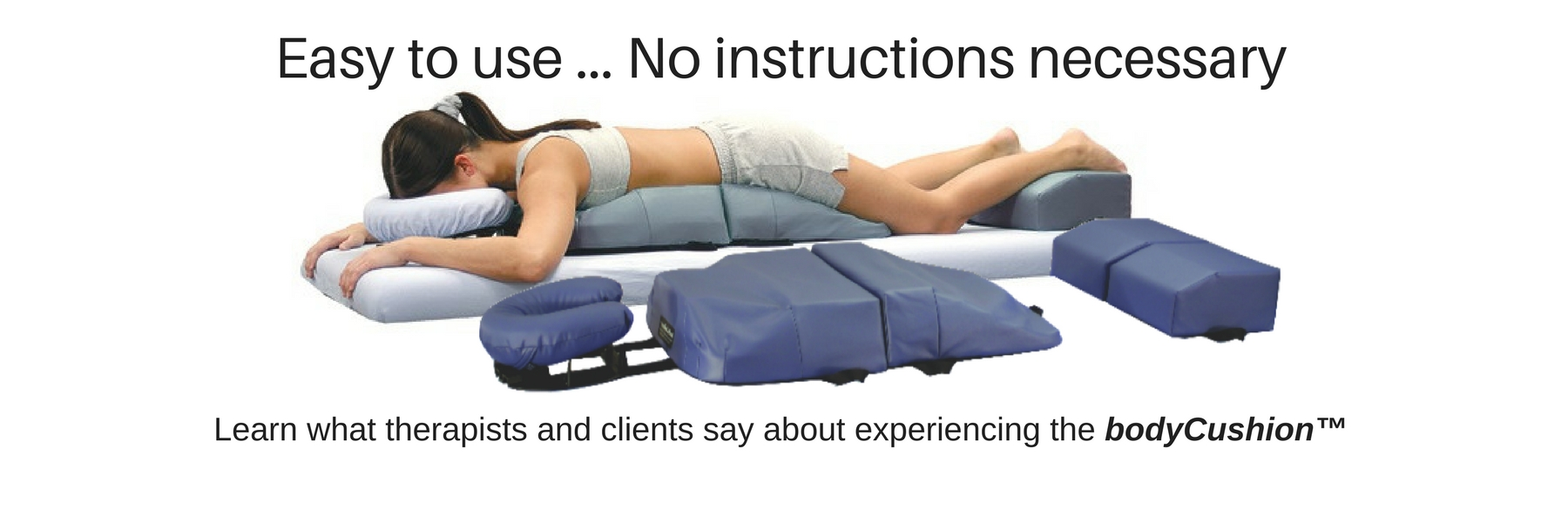 Easy to use ... No instructions necessary. Learn what therapists and clients say about experiencing the bodyCushion